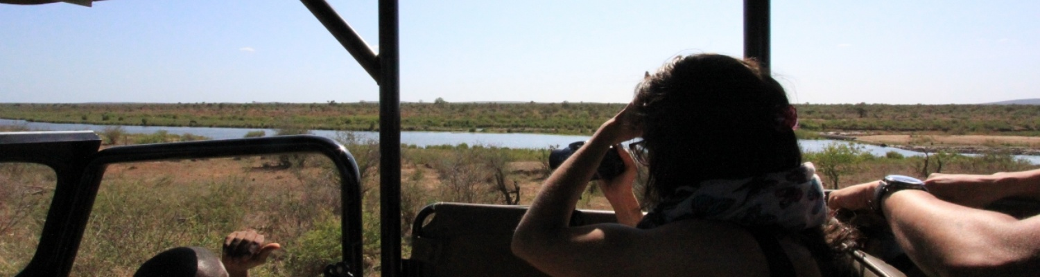 Searching To Find Predators and the Big Five in Kruger National Park