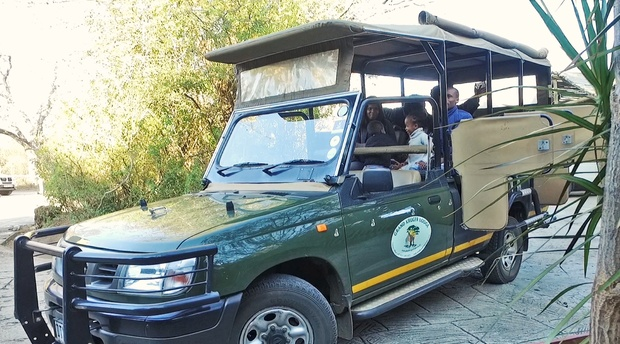 Full Day Game Drive to the Kruger National Park with Grand Kruger Lodge