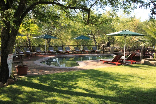 Grand Kruger Loge Swimming Pool