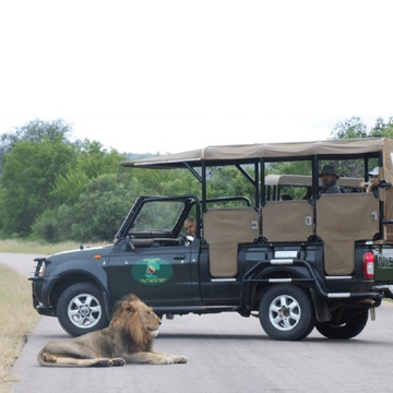 Full Day Game Drive in Kruger National Park with Grand Kruger Lodge