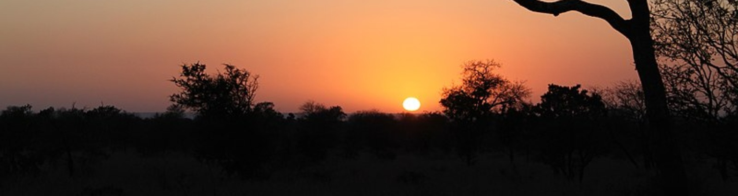 Sunset Game Drives in Kruger National Park