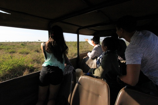 Kruger National Park Ideal Game Spotting Experience and Information