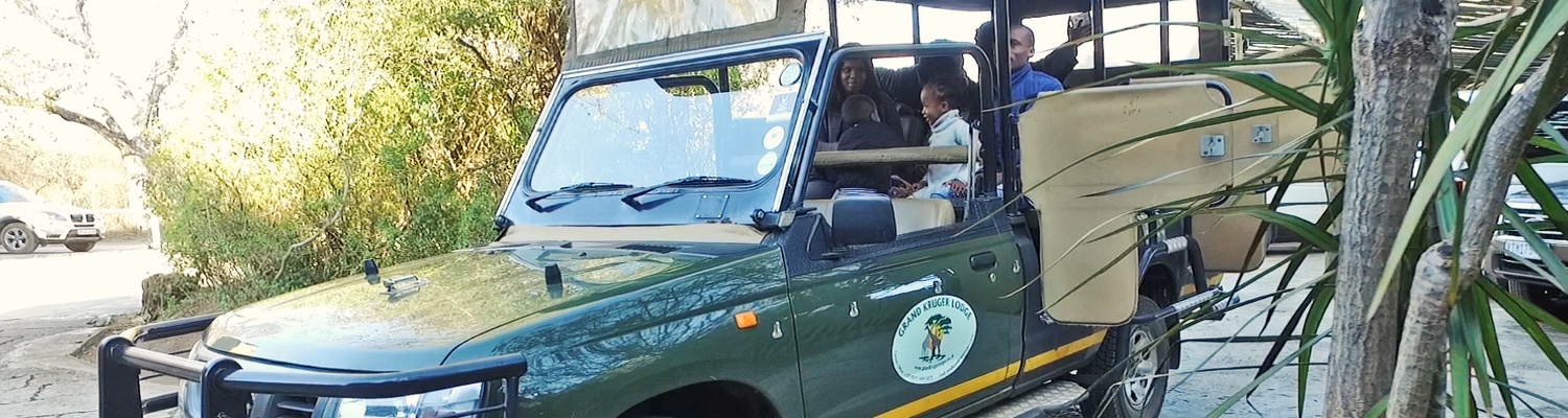 Full Day Game Drive in Kruger National Park