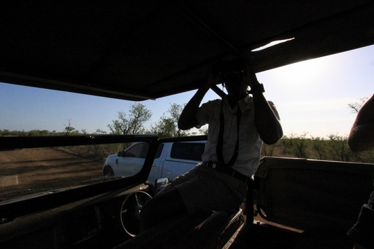 Full Day Game Drives