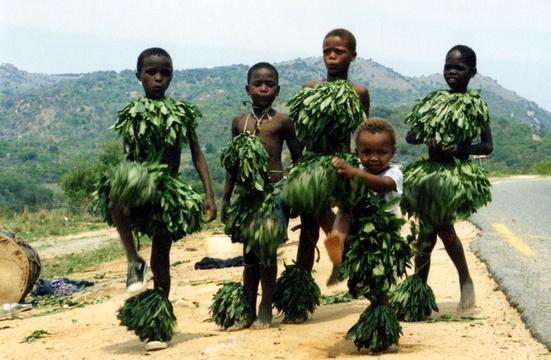 Swazi Children Dressed in Leaves