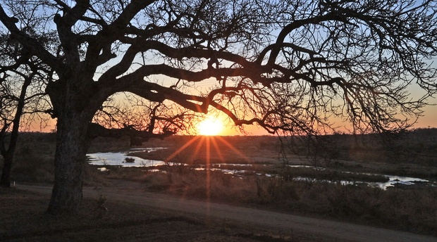 Local Sunset Safari in Marloth Park with Grand Kruger Lodge