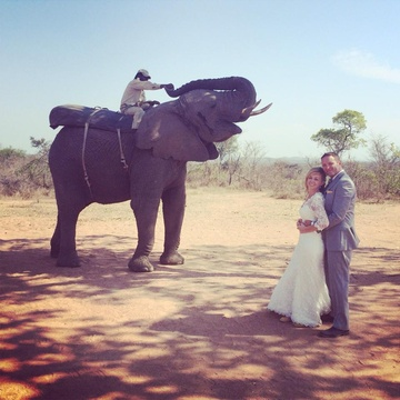 Elephant Wedding Experiences