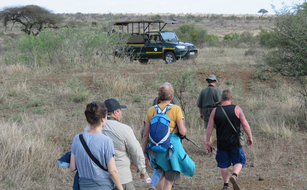 Bush Walk in KNP with Grand Kruger Lodge